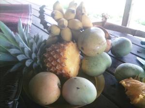Fruits at Rorru
